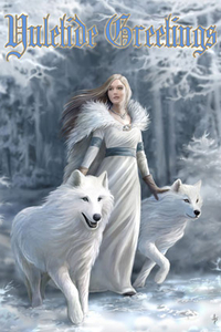 Anne Stokes Jul-Grußkarte - Winter Guardians