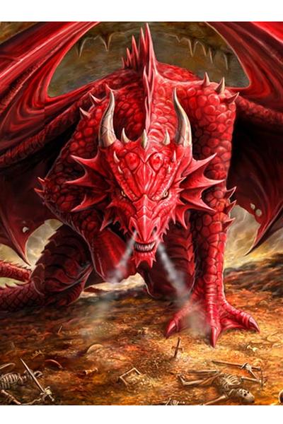 Anne Stokes Drachen Grußkarte Dragons Lair