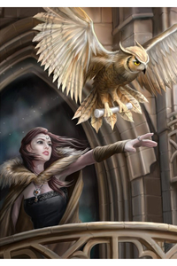 Anne Stokes Girls and Dragons Grußkarte - Owl Messenger