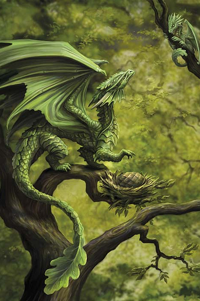 Forest dragon anne stokes dragon age greeting card 299 forest dragon anne stokes dragon age greeting card m4hsunfo