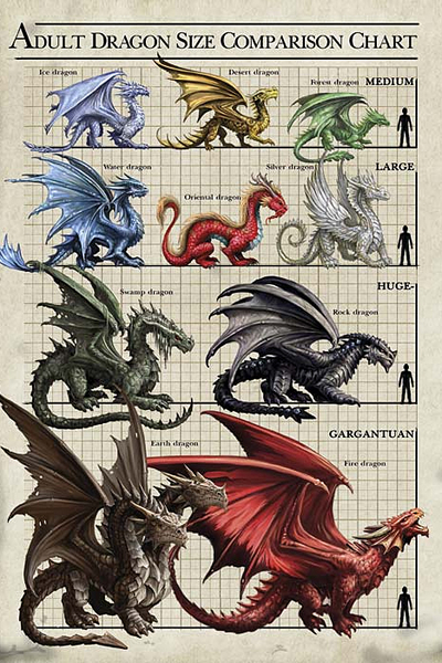 Dragon size chart anne stokes dragon age greeting card 299 dragon size chart anne stokes dragon age greeting card m4hsunfo