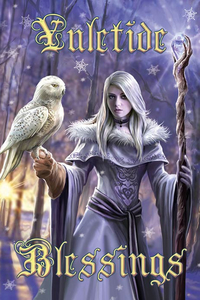 Anne Stokes Jul-Grußkarte - Winter Owl